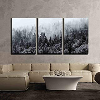 QueenKer 3 Piece Canvas Print Wall Art for Living Room Bedroom Misty Forests of Evergreen Coniferous Trees in an Ethereal Landscape on Canvas Stretched and Framed Ready to Hang 16x20inx3