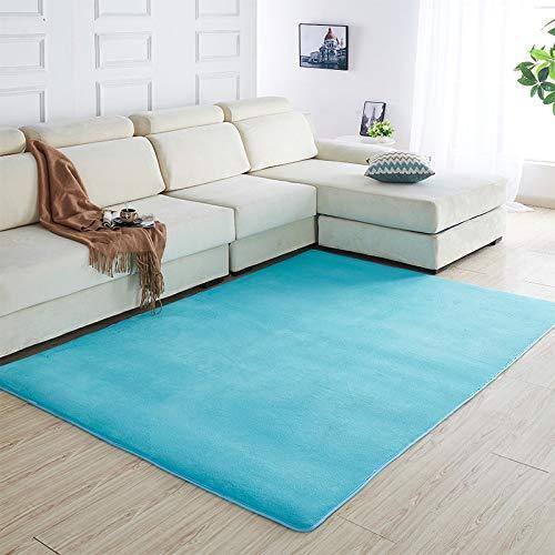 SDSA Verdikt koraal fluwelen huishoudtapijt, kinderkamer slaapkamer kruipende antislip tapijt, vrijetijdshuisdecoratie hemelsblauw