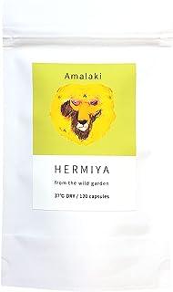 アムラ アマラキ 粉末 サプリメント 120カプセル 無農薬 無添加 植物100%