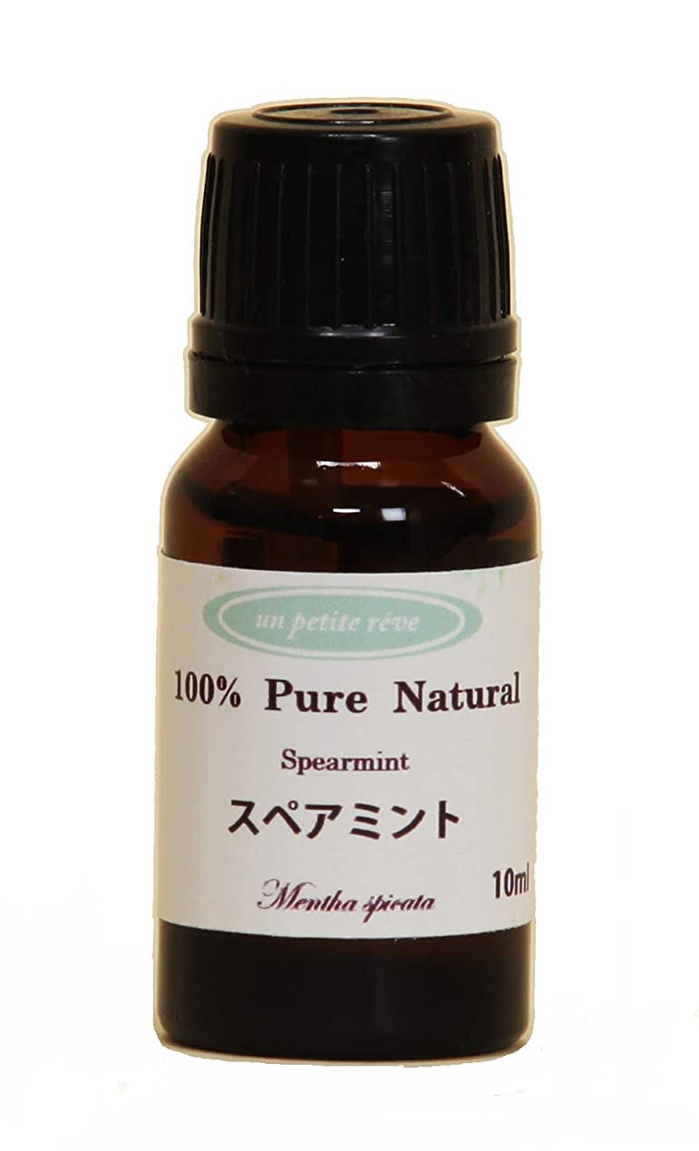 アミューズ揃える支配的スペアミント 10ml 100%天然アロマエッセンシャルオイル(精油)