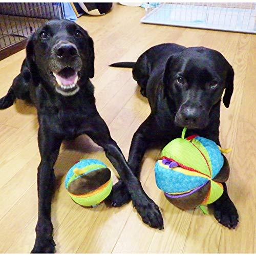 プラッツ(PLATZ)犬用おもちゃサーカスボールMMサイズ