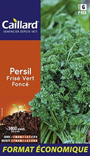 Caillard PFCD14401 Graines de Persil Frise Vert Fonce