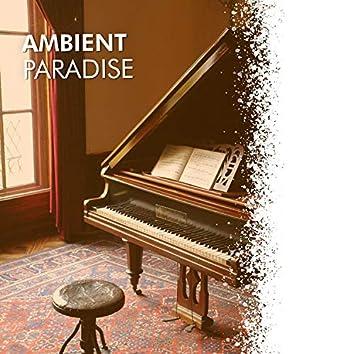 # 1 Album: Ambient Paradise