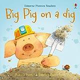 Big Pig on a Dig (Phonics Readers)