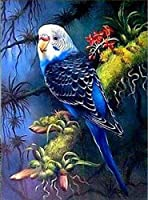 大人のためのDIY油絵キットキャンバス絵画番号でペイント家の装飾壁最高の贈り物木の上の青い尾の鳥-40cmx50cm