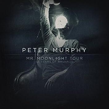 Mr. Moonlight Tour - 35 Years of Bauhaus (Live)
