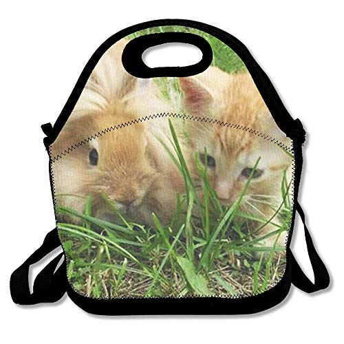 Lightweight Same Color Cat And Rabbit Insulation Lunch Bag Gourmet Warm Bag Handbag Outdoor Travel Picnic Lunch Box Bag Work For School Office Or