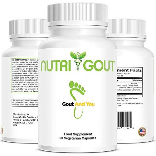 Nutrigout – Rezeptur zur Unterstützung gegen Harnsäure – Hergestellt in den USA – 500 mg 90...