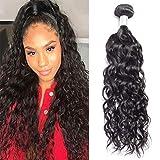 Lemoda Hair Malaysian Water Wave 1 Bundle Virgin Hair and Unprocessed Human Hair Extensions 20 inch
