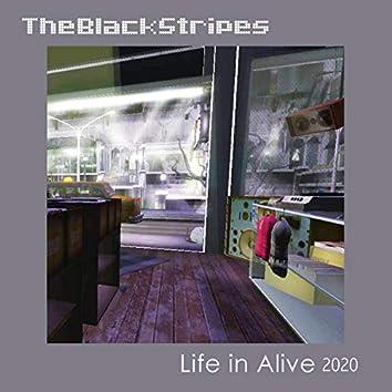 Life in Alive 2020
