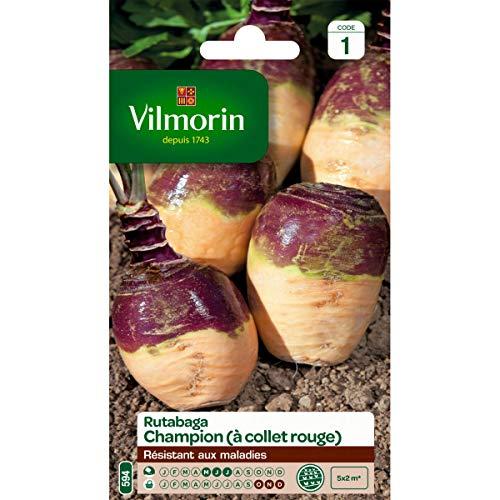 Vilmorin - Sachet graines Rutabaga CHAMPION (à collet rouge)