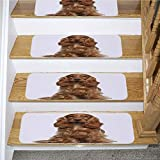 Dog Stair Mat,English Cocker Spaniel 9 Months Old Sitting Against White Background,for Outside and Indoor Stairs,5-Pack/8.5x27.5in