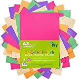 Papier de construction Ivy Stationery - Format A3 - 100 feuilles colorées -...
