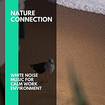 Nature Connection - White Noise Music for Calm Work Environment