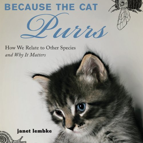 Because the Cat Purrs audiobook cover art