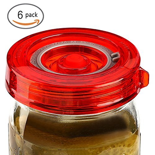Fermenting Lids, Fermentation Glass Weights, Sauerkraut Packer, Pump (6 Wide Mouth Lids + Pump)