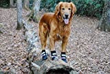 Bark Brite All Weather Neoprene Paw Protector Dog Boots with Reflective Straps in 5 Sizes! (Lg (3.5 in.)) Travel Zipper Case Included!