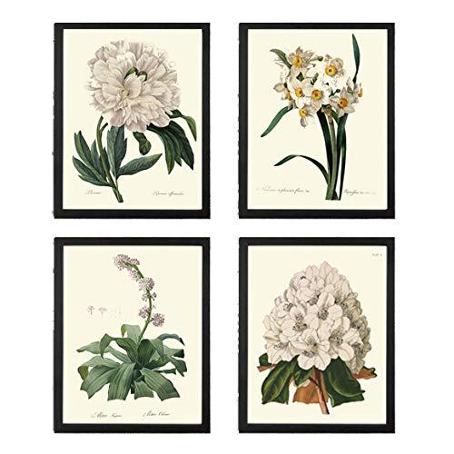 Botanical Flower Garden Illustrated Art Print Flower Wall Art Flower Print Plant Print Flower Illustration Print Botanical Print