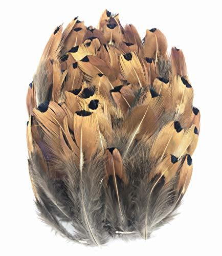 ERGEOB® 100 stück Natürliche Fasan Haar Feder geflügel Fasan Federn großer Punkt Federn 5-8cm