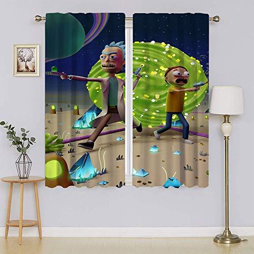 Rick and Morty - Cortinas opacas con filtro de luz, cortinas de privacidad para el pasillo (55 x 45 pulgadas)