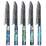 Damascus Chef Knife Santoku Hajegato Unique One of Kind Handle Professional 7 Inch Japanese Chefs Kitchen Knife Vg10 High Quality 67 Layers Damascus Steel Knive with Sheath