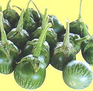 petch siam eggplant