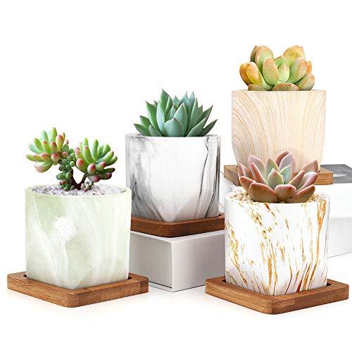 Set di 2 vasi di plastica Fiore Pianta Decorazione 2 COLORATO fioriera PIATTINO Gloss UK