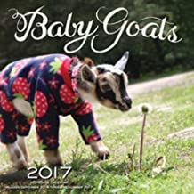 Baby Goats 2017: 16-Month Calendar September 2016 through December 2017 by Editors of Rock Point (2016-08-01)