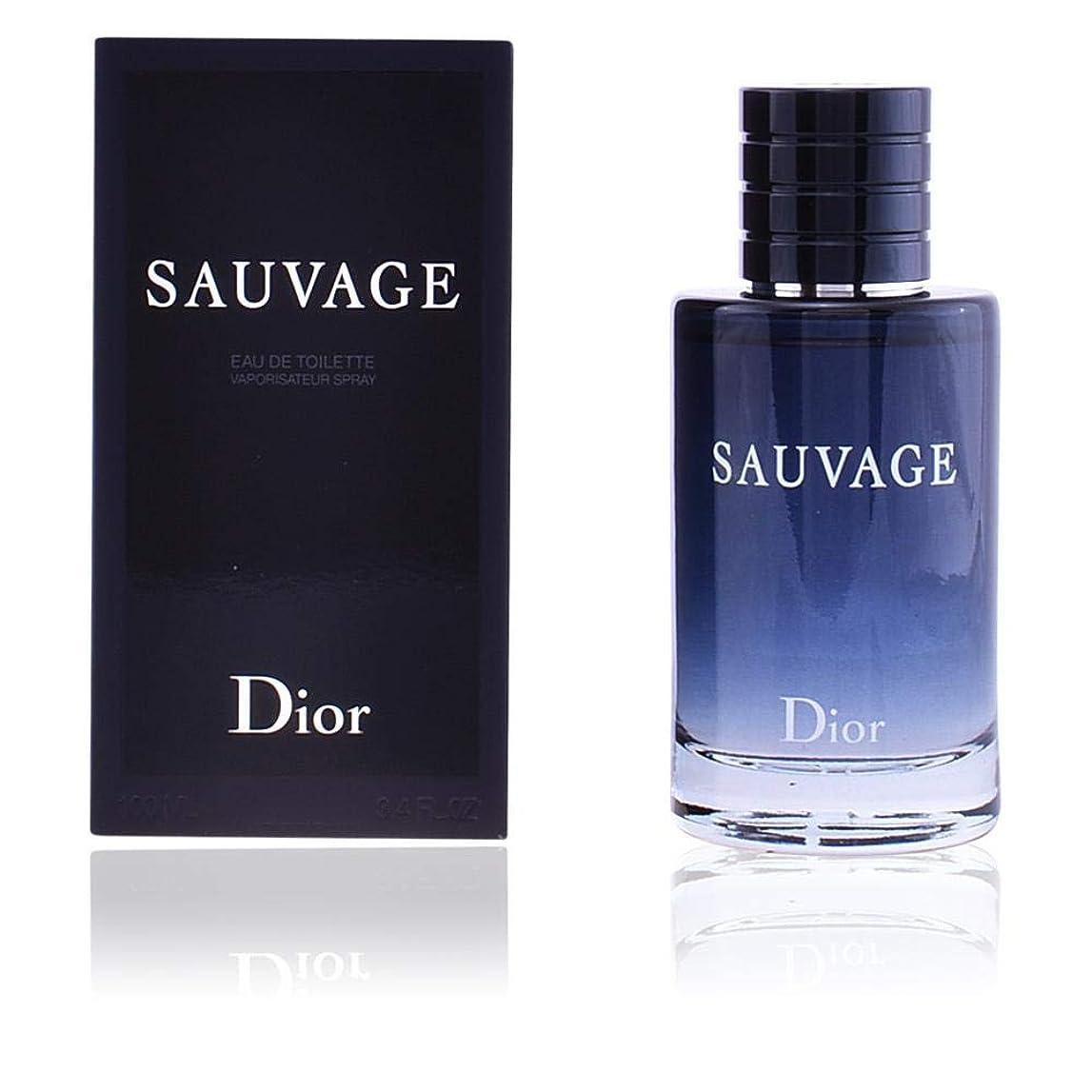 おとなしい理由ミネラルクリスチャン ディオール(Christian Dior) ソヴァージュ EDT SP 200ml[並行輸入品]