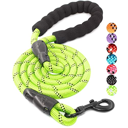 BAAPET 5 FT Strong Dog Leash with Comfortable Padded Handle and Highly Reflective Threads for Small Medium and Large Dogs (1/2'', Green)