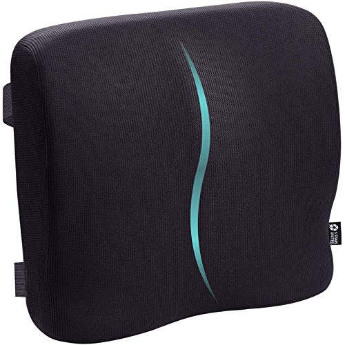 5 STARS UNITED Back Support for Office Chair - Memory Foam Lumbar Pillow - Perfect Cushion for Car, Computer and Desk Seat