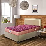 Peps Springkoil Bonnell 10-inch Queen Size Spring Mattress (Maroon, 78x60x10)