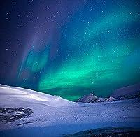 HD5x7ftビニールアラスカ冬ノーザンライツ写真スタジオ背景背景