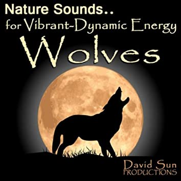Wolves (Nature Sounds for Vibrant-Dynamic Energy)