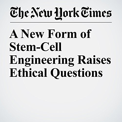 A New Form of Stem-Cell Engineering Raises Ethical Questions audiobook cover art