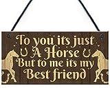 RED OCEAN Gift For Horse Lovers Best Friend Hanging Stable Door Bedroom Sign Horse Birthday Gift For Girls Women