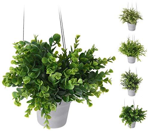 AC-Déco Plante en Pot Rond à Suspendre - Blanc