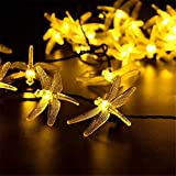 YOUANG Luces solares al aire libre, iluminación impermeable...