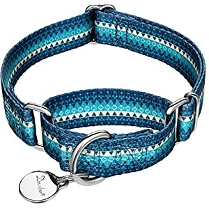 Dazzber Fashion Print and Unique Geometric Pattern Martingale Dog Collar, Silky Soft Safety Training Collars for Small to Large Dogs (Medium, Turquoise)