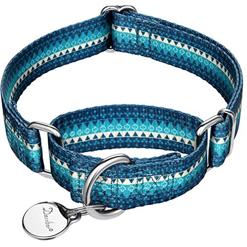 Dazzber Martingale Collar Nylon Dog Collar No Pull Pet Collar Heavy Duty for Medium and Large Dogs, Adjustable 17 Inch to 25 Inch, Turquoise Green