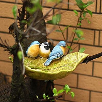 Deinbe P/ájaro del Animal dom/éstico de pl/ástico Copas Agua de la Taza del Loro Aves de Corral Palomas Jaula Coop Copa del alimentador Verde Alimentaci/ón S//M//L