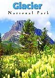 Glacier National Park [DVD] [1994] [Region 1] [US Import] [NTSC]