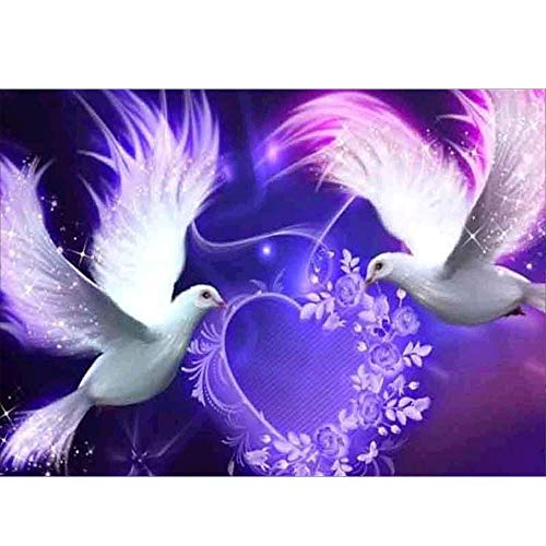 5D DIY diamante pintura taladro completo cristal diamante bordado pinturas artes kit de punto de cruz Adultos Amor de paloma animalpara Decoración de Pared, Regalo de casa(30cm × 40cm)