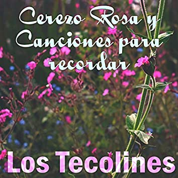 Cerezo Rosa y Canciones para Recordar