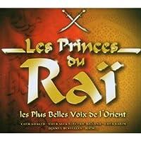 Les Princes Du Rai: Les Plus