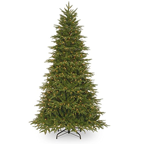 National Tree Company 'Feel Real' Pre-lit Artificial Christmas Tree | Includes Pre-strung White Lights and Stand | Northern Frasier - 6 ft