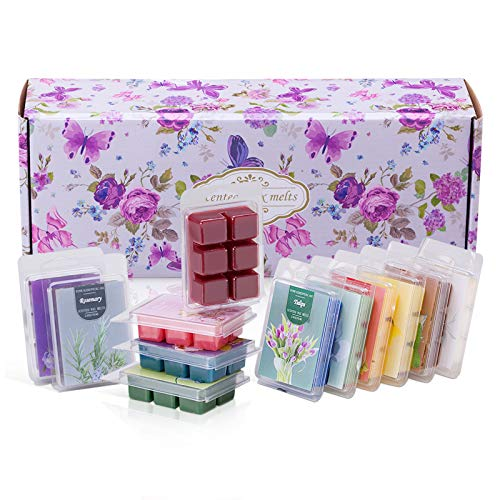 Scented Soy Wax Melts | Set of 12 Assorted 2.5oz Wax Cubes/Tarts | Home Fragrance for Candle Wax Warmer | Bulk Value