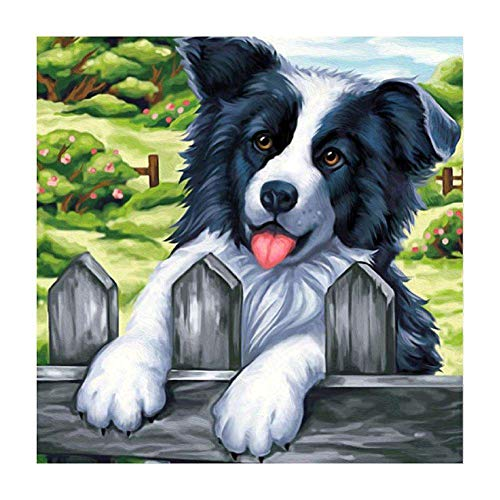 QGWMCD DIY 5D Diamond Painting Garden animal dog Full Drill Painting Rhinestone Embroidery Pictures Cross Stitch Arts Crafts for Home Wall Decor 11.8 inchx15.7 inch (Frameless)
