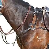 Kincade - Pechopetral de piel con cinco puntos (Pony) (Marrón)