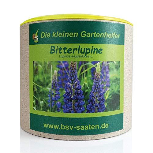 Keimsamen Bitterlupine 250g I Samen zur Aussaat im Garten I Bodenverbesserung fürsandige & lehmige Böden I Saatgut für 25 m²